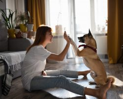 Komunikace psů aneb co říká můj pes